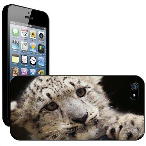 Neige Léopard Coque arrière rigide détachable pour Apple iPhone modèles, plastique, Cute Baby Snow Leopard Cub, iPhone 5/5s Cute Baby Snow Leopard Cub