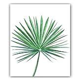 Tela di canapa della foglia di palma che dipinge la foto di arte della parete di manifesto verde fresco della pianta per la decorazione domestica