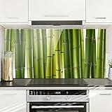 Bilderwelten Spritzschutz Glas - Bambuspflanzen - Quer 1:2 Wandbild Küchenrückwand Küchenspiegel Küchenspritzschutz Glasrückwand Küche Spritzschutz Herd, Größe HxB: 40cm x 80cm