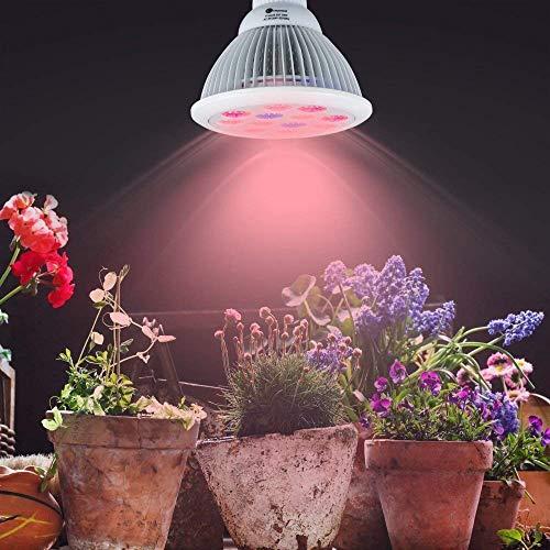 Bluesea Pflanzenlampe E27 24W LED Pflanzenlampe für Zimmerpflanzen, Blumen und Gemüse Wachstumslampe Pflanzenlicht Pflanzen Licht Glühbirne