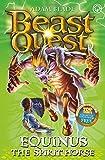 Equinus the Spirit Horse: Book 20 (Beast Quest)