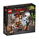 Lego Ninjago Movie Spinjitzu Training 70606 Building Kit (109 Teile)