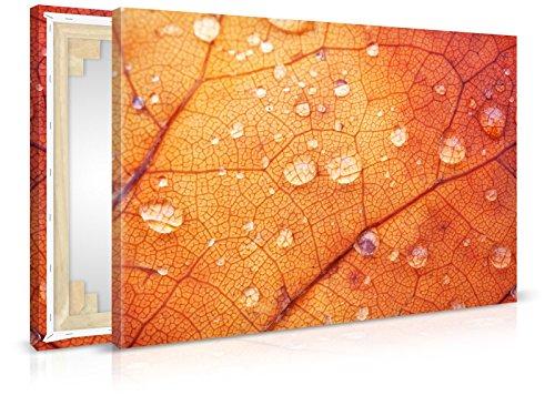 Quadro su tela Autunno Stretched gocce, Stampa, Stampa artistica su tela Immagine con cornice da (Autumn Leaves Framed)
