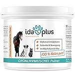 IdaPlus– Grünlippmuschel Pulver Muschel Extrakt (100 g) | Fördert den Aufbau...