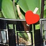 EinsSein 100x Deko Klammern Herz rot Holz rot rote rotes Mini Herz Herzen deko klein kleine Klammern Holzklammern Hochzeit Wäscheklammer Tischkarte Blumenklammer Blumen Gastgeschenke - 5