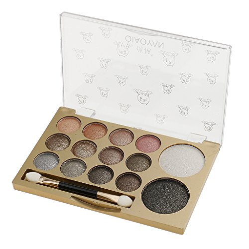 Segolike Professional Cosmetic 14 Colors Pearl Shimmer Matt Eyeshadow Eye Gloss Glitter Eye Shadow Shade Palette with Brush Mirror Makeup Kit Beauty Tool - 2#  available at amazon for Rs.315