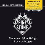 Fire and Stone 651860 Cordes pour Guitare Classique