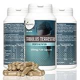 Vegavero Tribulus Terestris 600mg | 120 Kapseln | Hochdosiert mit 95% Saponin-Gehalt | Muskelaufbau | Vegan