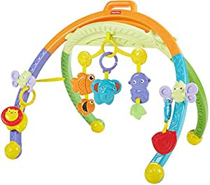 684442cc80d39 Image Unavailable. Image not available for. Colour  Fisher-Price Growing  Baby Folding Activity Gym