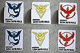 Pokemon Go Team Trainer Code Aufkleber Sticker #2 | individuell mit Name und Code | Valor Mystic Instinct