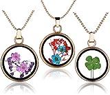 Yumilok Trébol Seco de Cuatro Hojas / Flor de Ciruelo Transparente Colgante Circular Collar Colgante de Aleación de Vidrio Botella Cadena para Mujer Niñas, 3 Piezas
