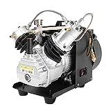 TOPQSC Einstellbare Auto-Stop 300BAR 30MPA 4500PSI Hochdruckluftpumpe Elektrische Luftkompressor für Luftgewehr Gewehr PCP Inflator (PSI-9)