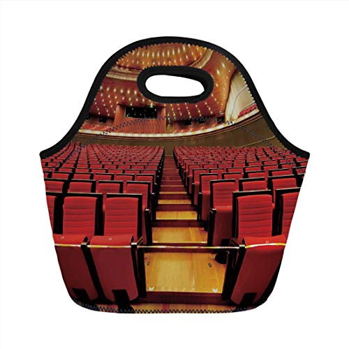 nch Bag,Musical Theatre Home Decor,China National Grand Theater Hall Chairs Auditorium Image,Red Light Brown,for Kids Adult Thermal Insulated Tote Bags ()