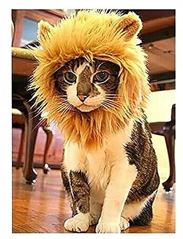 Polo honey Pet Costume Lion Mane Perruque pour chien ou chat Halloween Dress Up avec oreilles, tourne votre animal de compagnie dans un lion