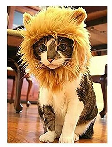 Polo honey Pet Costume Lion Mane Perruque pour chien ou chat Halloween Dress Up avec oreilles, tourne votre animal de compagnie dans un lion féroce