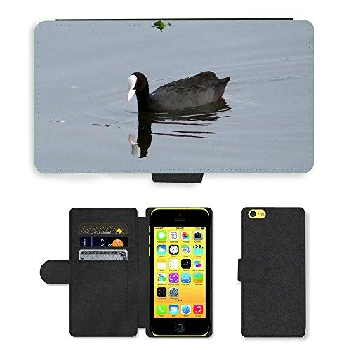 Just Mobile pour Hot Style Téléphone portable étui portefeuille en cuir PU avec fente pour carte//m00139677Foulque macroule Fulica Atra Oiseaux Foulque//Apple iPhone 5C