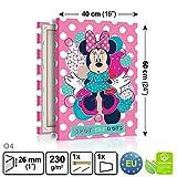 Disney Minnie Mouse LEINWAND DRUCK FOTO BILD