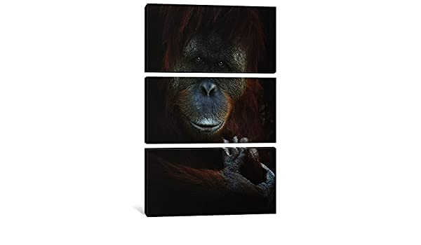 0.75 x 40 x 60-Inch iCanvasART 3-Piece Emotion Canvas Print by SD Smart