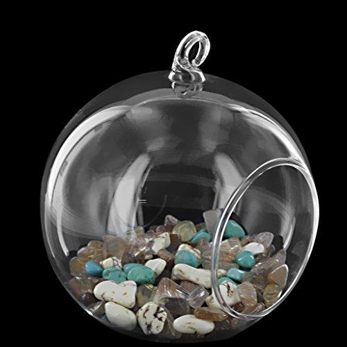 Vase suspendu en verre transparent boule pour plantes fleurs avec support fer int rieur maison - Boule verre suspendu ...