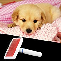 Momorain Haustier Hund Katze Haarpflege Trimmer Kamm Füße drucken Haustier Flohkamm Gilling Pinsel Slicker Tool Hund sauber Werkzeug (Farbe: zufällig geliefert)