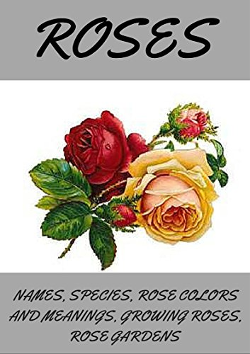 Planting Rose Garden (ROSES: Roses, how to grow roses, planting roses, rose spices types and names, rose colors and meanings, rose gardening. (English Edition))