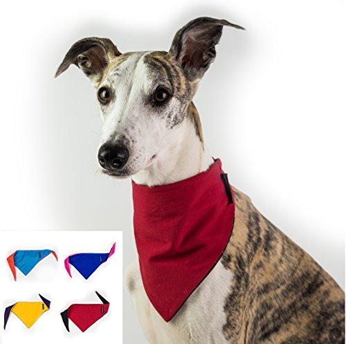 Dognsug Hunde-Halstuch, Kühlung, Lätzchen und Kragen, wendbar, erhältlich in den Größen S/M/L/Rot/Weiß/Gelb/Blau/Orange/Pink/Violett -