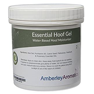 Amberley Aromatics Essential Hoof Gel, 250 ml Essential Hoof Gel 250ml – For Cracked Hooves – 100% Natural – Moisturising Hoof Gel with Aloe Vera, ProVit B5 & Conditioning Essential Oils 51IIfY5UUNL