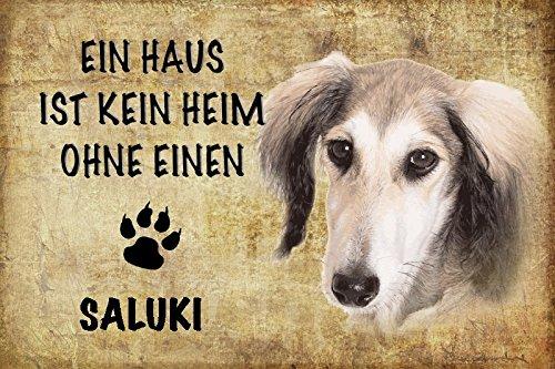 ComCard Ein haus ist kein heim ohne einen Saluki hund schild aus blech, metal sign, tin (Saluki Hund)