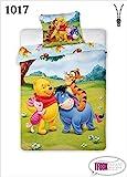 2 tlg Kinderbettwäsche 100x135 40x60 Disney 1017 Winnie The Pooh