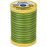 Cotton Machine Quilting Thread Multicolor 225yd-Spring Green
