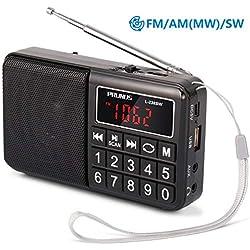 PRUNUS L-238SW Radio Portable Rechargeable FM/AM(MW)/SW USB Micro-SD et Lecteur Mp3 intégré. Clavier du Tableau de Bord doté de Grands Boutons très lisibles.(sans la Fonction de mémorisation Manuelle)
