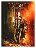The Hobbit: The Desolation of Smaug [DVD] by Andy Serkis