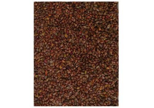 eigenmarke-vinaccioli-sfusi-5-kg