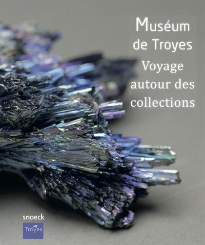 Musée de Troyes : Voyage autour des collections