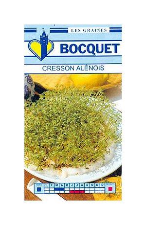 Les Graines Bocquet - Graines De Cresson Alénois Commun - Graines Potagères À Semer - Sachet De 3Grammes