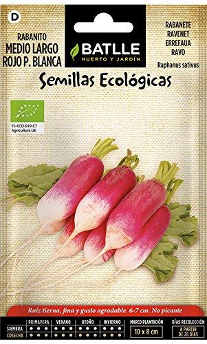 Semillas Ecológicas Hortícolas - Rabanito Medio Largo Rojo Punta Blanca- ECO - Batlle