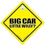 """Big Little Willy Schild Sign Auto Car Sticker, Autoaufkleber, Aufschrift """", Witz, Stil, Racer Boy Autoaufkleber Auto, 4 x 4, Motiv Auto Car Sign Schilder, Aufkleber, Car Sticker,"""