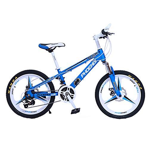 Wangkai Mountainbike Carbonstahl EIN Rad Offroad-Dämpfer Doppelscheibenbremsen Vorn und Hinten,Blue (Roulette-rad 20)