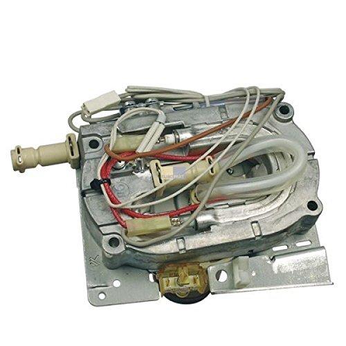 DeLonghi Thermoblock, Durchlauferhitzer, Heizelement komplett mit 6mm Stutzen für EAB, ESAM Serie - Nr.: 7313213911
