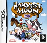 Harvest Moon DS Bild