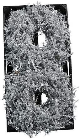 Asparagus Kranz Wildspargel gewachst 35cm weiss Türkranz Wandkranz Tischkranz