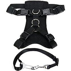 XCSOURCE® Arnés Perro Ajustable para Raza Mediana + Cinturón Seguridad Seguro Paseo Fácil Color Negro M PS026