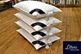 Littens 4 Pack Hotel Quality Goose Feather & Down Pillows, 15% Down, Pure