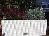 2 x Lechuza Balconera 50 Cottage Weiß