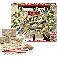 KandyToys Dinosaur Fossils Digging Excavation Kit Dig Your Own Skeleton Glow In The Dark