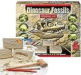 Dinosaur Fossils Digging Kit - Excavate 6 Different Dinosaurs