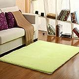 GRENSS 1 Stück hochwertige Fleece Berber Teppich für Wohnzimmer massive dicke Teppiche auf dem Boden bequem Rutschfeste Teppich 9 Farben V20, grün, 100 x 200 cm