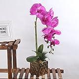 Alicemall Kunstpflanze Orchidee Künstliche Blumen Deko mit Übertopf aus Keramik 23x9x26 cm (F)