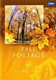 Nature's Beauty - Fall Foliage [Edizione: Regno Unito]
