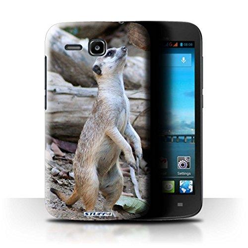 Stuff4 Hülle / Hülle für Huawei Ascend Y600 / Erdmännchen Muster / Wilde Tiere Kollektion